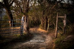 Welcome to Madhuvan
