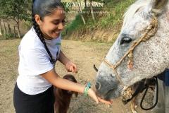 Govinda Madhava feeding Horsie